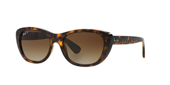 Ray Ban Rb 4227 710/t5